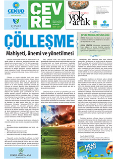 gazete-mart-2017
