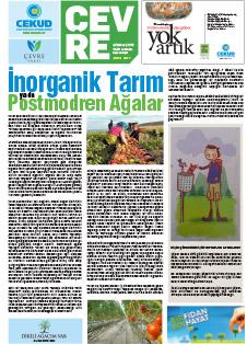 gazete-mayis-2017