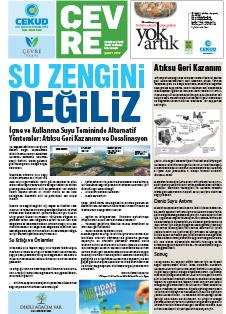 gazete-subat-2017
